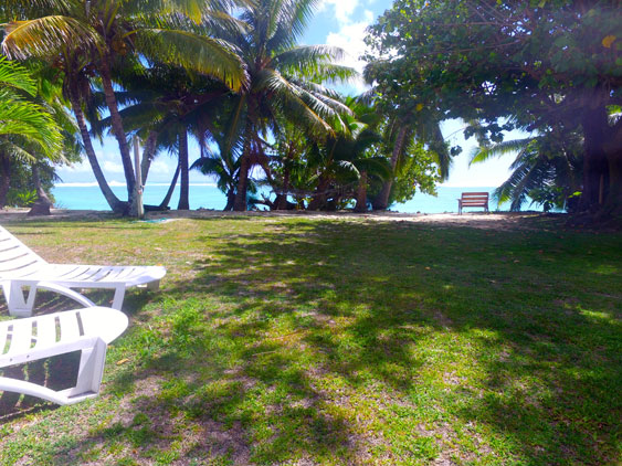 The back yard is ideal for kids to run around in at Teiao Beachfront