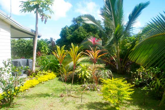 the garden at Kia Manuia, Rarotonga, Cook Islands