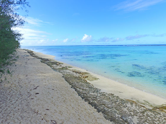 "Macs is across the road from Rarotonga's top snorkeling spot ""fruits of Rarotonga"""