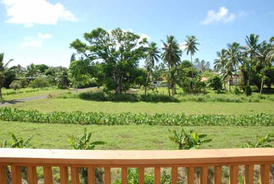 views of the surrounding taro and noni plantations from the expansive balcony